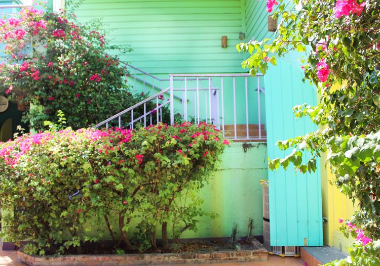 beautiful colors of St. John