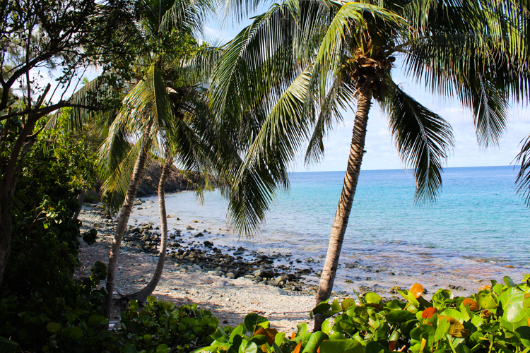 Vida de Mar villa St. John, USVI