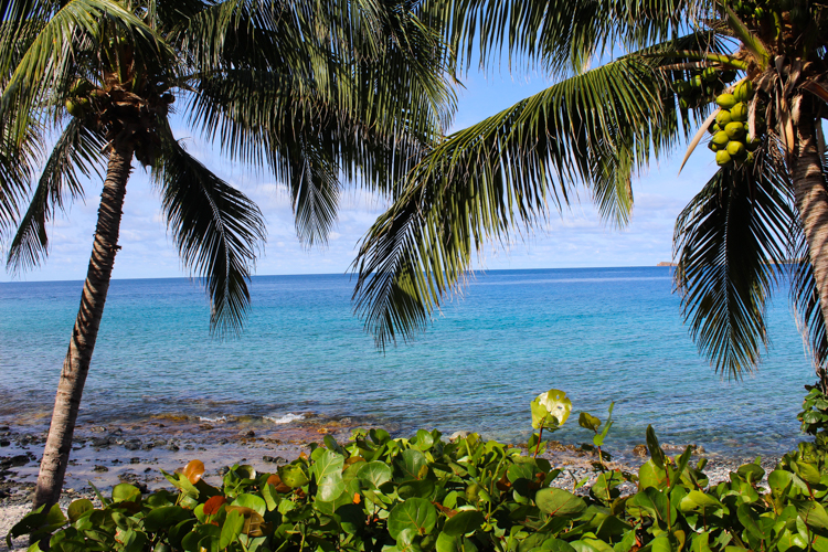 Vida de Mar vila beach St. John, USVI
