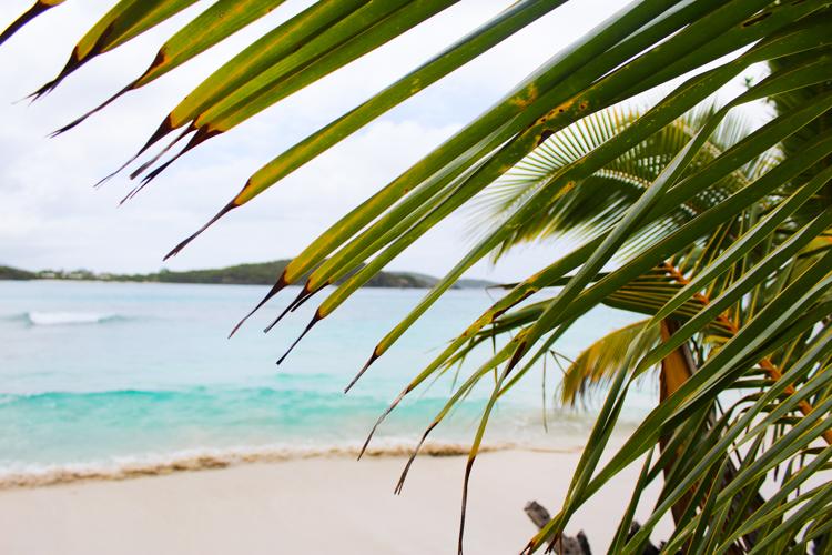 Oppenheimer Beach Virgin Islands